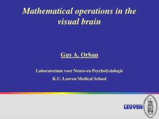 Mathematical operations in the  visual brain