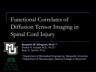 Functional Correlates of Diffusion Tensor Imaging in Spinal Cord Injury
