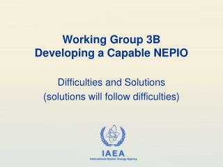 Working Group 3B Developing a Capable NEPIO