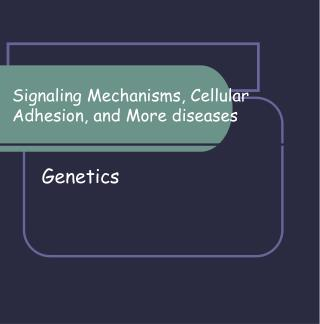 Signaling Mechanisms, Cellular Adhesion, and More diseases