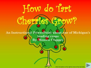 How do Tart Cherries Grow?