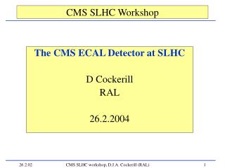CMS SLHC Workshop