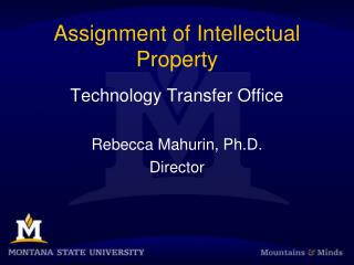 Assignment of Intellectual Property