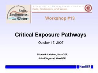 Critical Exposure Pathways