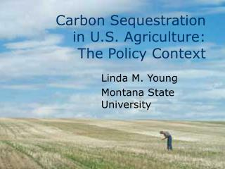 Carbon Sequestration  in U.S. Agriculture:  The Policy Context