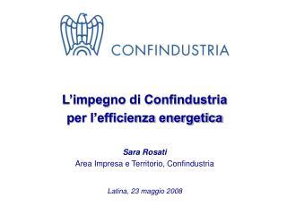 L'impegno di Confindustria  per l'efficienza energetica Sara Rosati