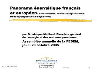 par Dominique Maillard, Directeur général de l'énergie et des matières premières