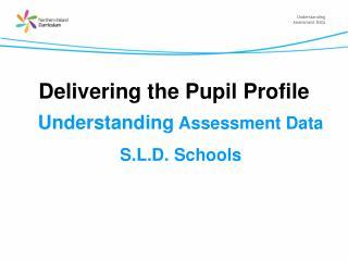 Delivering the Pupil Profile