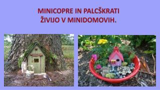 MINICOPRE IN PALCŠKRATI ŽIVIJO V MINIDOMOVIH.