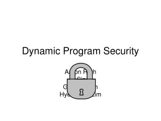 Dynamic Program Security