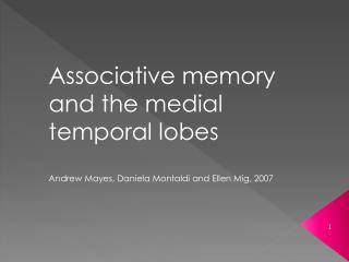 Associative memory and the medial temporal lobes