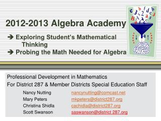 Professional Development in Mathematics