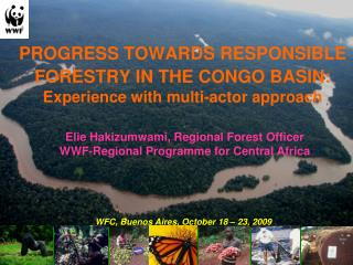 PROGRESS TOWARDS RESPONSIBLE FORESTRY IN THE CONGO BASIN: Experience with multi-actor approach