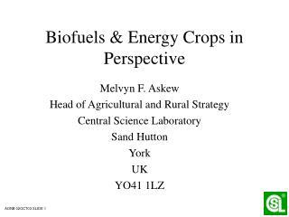 Biofuels & Energy Crops in Perspective