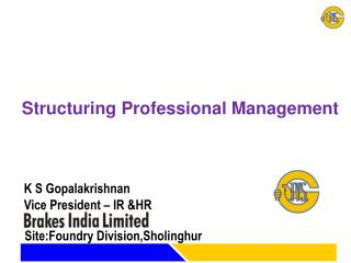 Structuring Professional Management