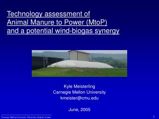 Technology assessment of  Animal Manure to Power (MtoP) and a potential wind-biogas synergy