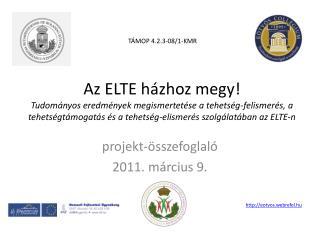 projekt-összefoglaló 2011. március 9.