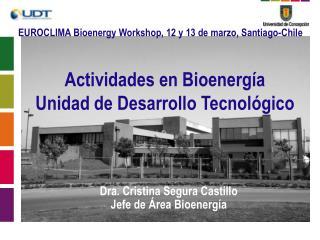 Actividades en Bioenergía Unidad de Desarrollo Tecnológico