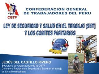 LEY DE SEGURIDAD Y SALUD EN EL TRABAJO (SST)  Y LOS COMITES PARITARIOS