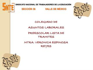 SINDICATO NACIONAL DE TRABAJADORES DE LA EDUCACIÓN SECCIÓN 36               VALLE DE MÉXICO
