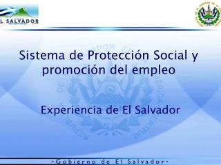 Sistema de Protección Social y promoción del empleo