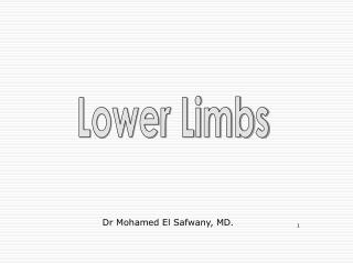 Lower Limbs