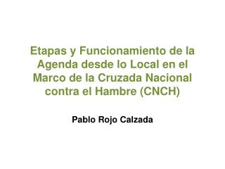 Pablo Rojo Calzada