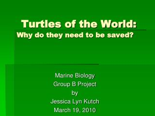 Turtles of the World: Why do they need to be saved?