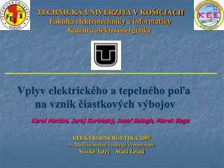 TECHNICKÁ UNIVERZITA V KOŠICIACH Fakulta elektrotechniky a informatiky Katedra elektroenergetiky