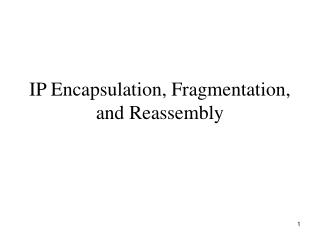 IP Encapsulation, Fragmentation, and Reassembly