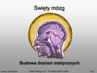 Święty mózg