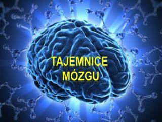 Tajemnice  Mózgu