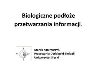 Biologiczne podłoże przetwarzania informacji .