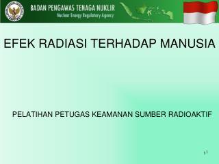 PELATIHAN PETUGAS KEAMANAN SUMBER  RADIOAKTIF