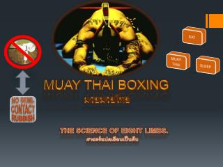 MUAY THAI BOXING มวยมวยไทย