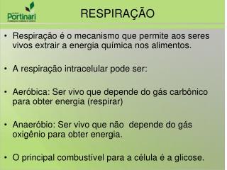 Respiração é o mecanismo que permite aos seres vivos extrair a energia química nos alimentos.