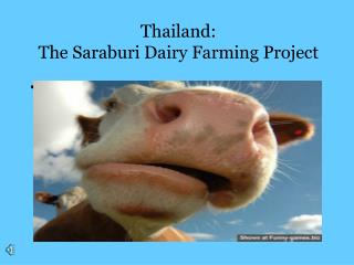 Thailand: The Saraburi Dairy Farming Project