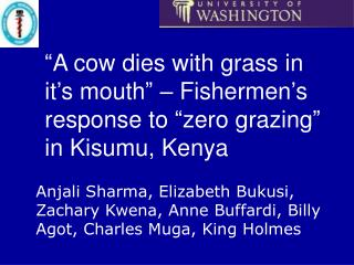 """""""A cow dies with grass in it's mouth"""" – Fishermen's response to """"zero grazing"""" in Kisumu, Kenya"""