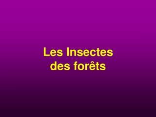 Les Insectes des forêts