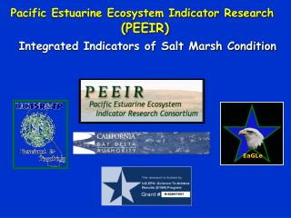Integrated Indicators of Salt Marsh Condition