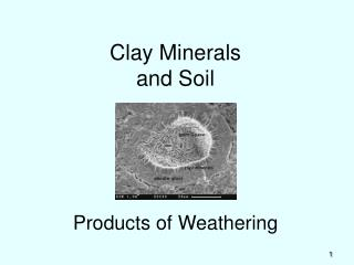 Clay Minerals and Soil