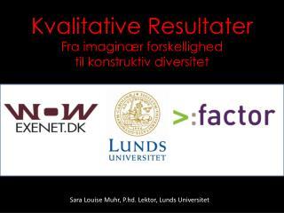 Kvalitative Resultater Fra imaginær forskellighed  til konstruktiv diversitet
