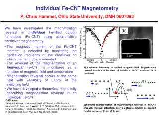 Individual Fe-CNT Magnetometry P. Chris Hammel, Ohio State University, DMR 0807093