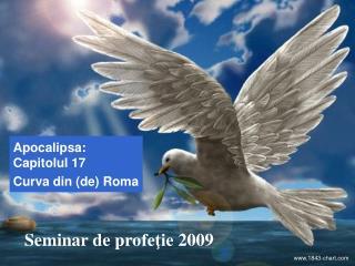 Seminar de p ro feţie  2009