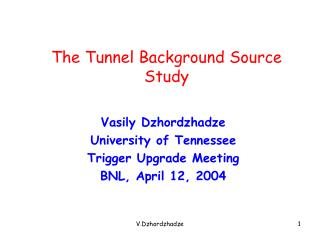 The Tunnel Background Source Study