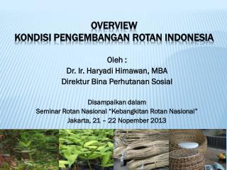 OVERVIEW  KONDISI PENGEMBANGAN ROTAN INDONESIA