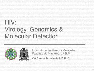 HIV: Virology, Genomics & Molecular Detection