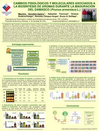 1 Laboratorio de Postcosecha, Instituto de Investigaciones Agropecuarias, CRI La Platina.