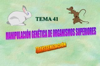 MANIPULACIÓN GENÉTICA DE ORGANISMOS SUPERIORES