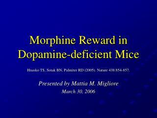 Morphine Reward in Dopamine-deficient Mice
